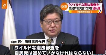 ワイルドな憲法審査1.jpg